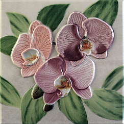 Orquideas Decor Placa Rosa 20x20